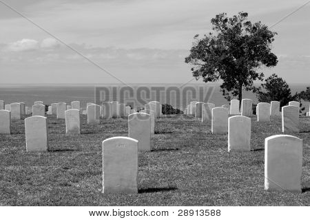 Remembering the fallen - somber black and white image of Fort Rosecrans National Cemetary in San Diego, California (USA). Pacific Ocean in background.