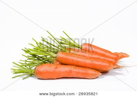 Fresh carrots on a white background