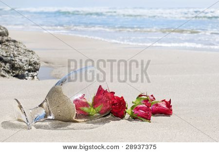 Red roses with a vase that fell over on the beach