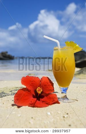 a Fresh ice cold fruit cocktail drink and poinsettia flower on a tropical island beach - focus on the drink