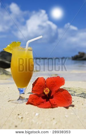 Fresh fruit cocktail and red poinsettia flower on a tropical island beach
