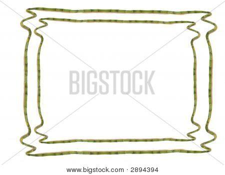 Lucky Bamboo Frame