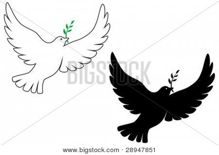 Peace dove vector drawing