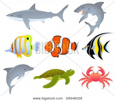 A vector set of sea creatures