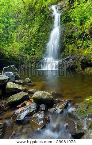 Beautiful Lush Waterfall in Hawaii