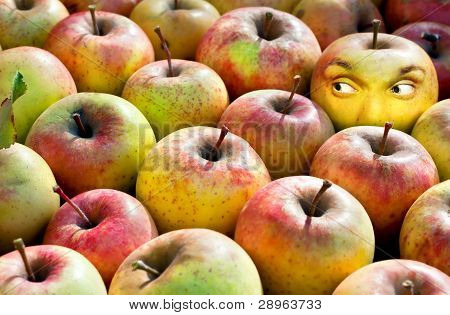 Apple com rosto