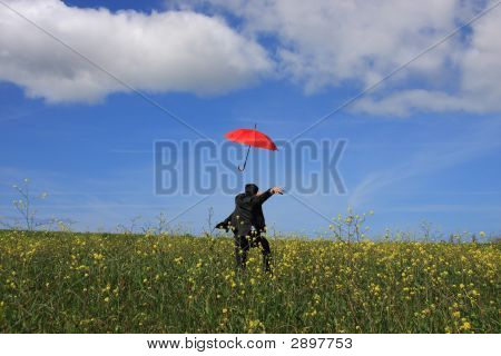 Flying Umbrella