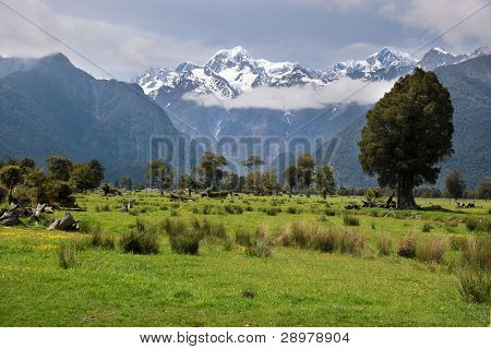 Looking To  Mount Cook From Fox Village