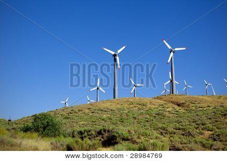 Aerogeneradores en colina