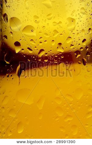 Beer And Condensation