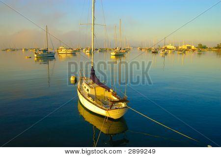 Segel-Boote im Hafen von San diego