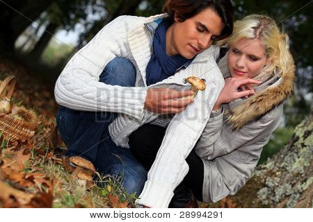 couple watching a mushroom in forest