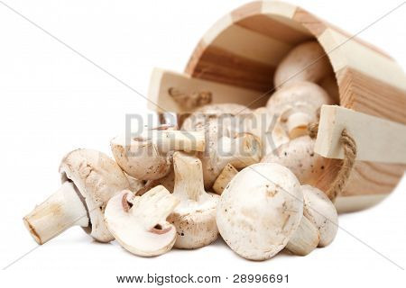 Mushrooms Champignons Spillage From The Wooden Bucket