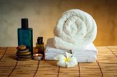 Spa Oil Massaging Treatment And Skincare Concept., Component Of Therapy Massage With Plumeria Or Fra poster