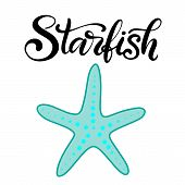Vector Lettering Illustration With Starfish. Word In Modern Calligraphy Style With Hand Drawn Starfi poster
