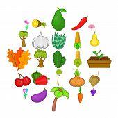 Botany Icons Set. Cartoon Set Of 25 Botany Vector Icons For Web Isolated On White Background poster