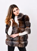 Female Brown Fur Coat. Fur Store Model Posing In Soft Fluffy Warm Coat. Pretty Fashionista. Fur Fash poster