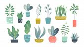 Flat Houseplants. Indoor Doodle Garden Plants, Cute Interior Succulents And House Plants. Hand Drawn poster