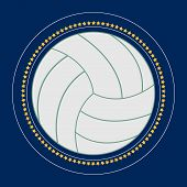Valleyball Icon Vector Flat Illustration. Volleyball Club Logo. Valleyball Emblem. The Symbol Of A V poster