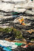 Cellophane Extruded Material For Processing In A Factory. Material Recycling And Sorting Of Garbage  poster