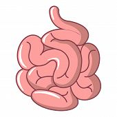 Small Intestine Icon. Cartoon Illustration Of Small Intestine Icon For Web Design Isolated On White  poster
