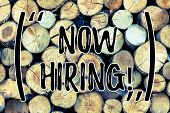Text Sign Showing Now Hiring. Conceptual Photo Workforce Wanted Employees Recruitment Wooden Backgro poster