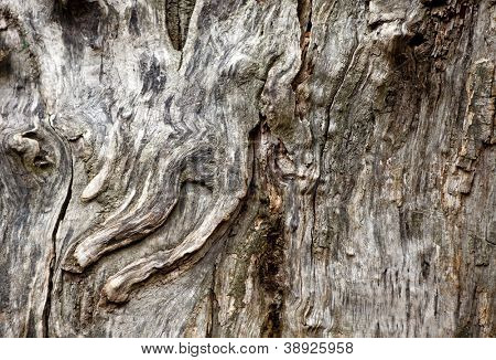 textura de madeira branca, cinzenta. antigos painéis de fundo