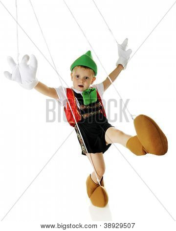 An adorable live preschool Pinocchio marionette dancing, strings and all.  On a white background.