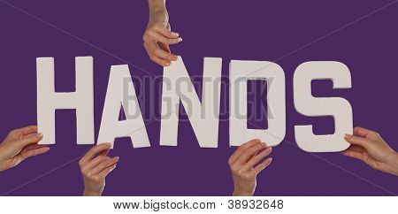 White alphabet lettering spelling HANDS held up over a purple studio background by outstreched female hands
