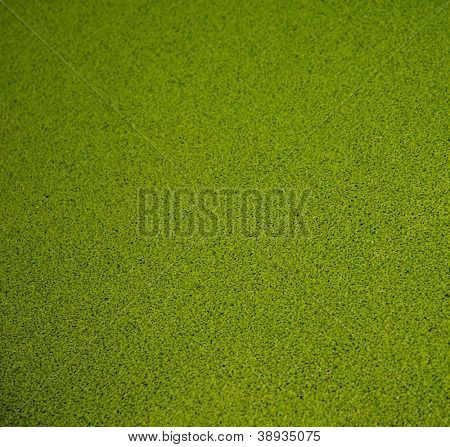 Close-up view of artificial green grass background