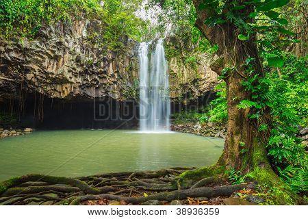 Bela cachoeira Tropical no Havaí