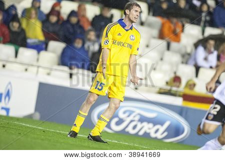 VALENCIA - NOVEMBER 7: Hleb during UEFA Champions League match between Valencia CF and FC Bate Borisov, on November 7, 2012, in Mestalla Stadium, Valencia, Spain