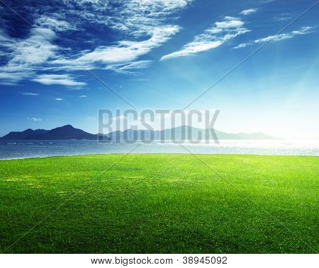 field of grass and sea in sunset time, Seychelles, LaDigue island