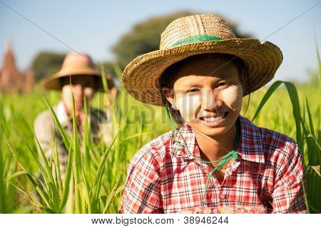 Portrait of a Burmese woman with thanaka powdered face working in farm