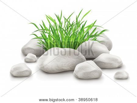 green grass in stones as landscape design element vector illustration isolated on white background EPS10. Gradient mesh used.
