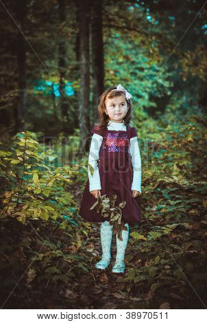 Little girl in a dress at autumn