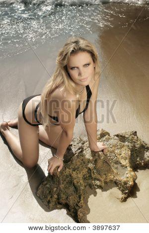 Gorgeous Female Model In Bikini On Beach