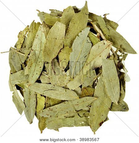 dried senna  leaves (Cassia angustifolia Vahl)   isolated on white