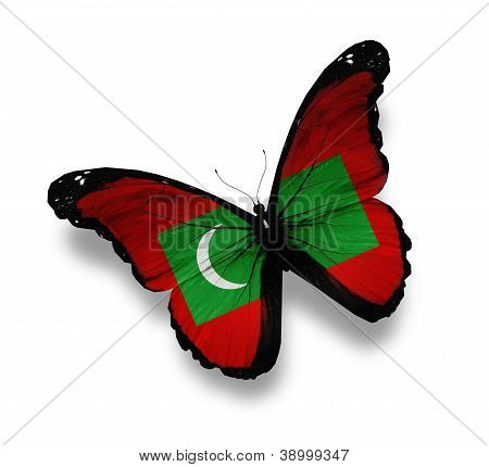 Maldivian Flag Butterfly, Isolated On White