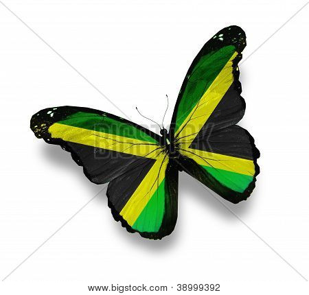 Jamaican Flag Butterfly, Isolated On White