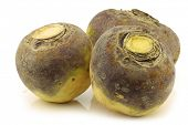 stock photo of turnips  - three fresh turnips - JPG