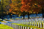 foto of arlington cemetery  - Arlington National Cemetery near to Washington DC - JPG