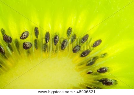 Fresh kiwi slice closeup