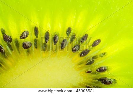 Fresh kiwi slice closeup