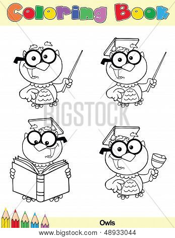 Coloring Book Page Teacher Owl Character
