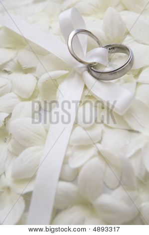 Wedding Rings On Flower Petals  Vertical