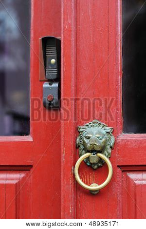 Lion Doorknob