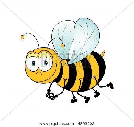 Sólo la abeja