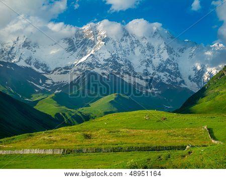 Beautiful meadow landscape near Ushguli, Svaneti, Georgia. Shkhara mountain in the background