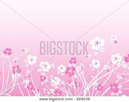 Caos floral